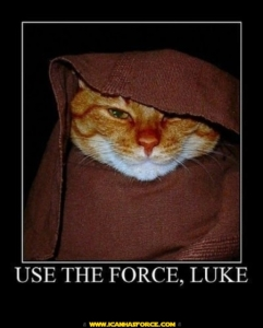 star-wars-motivational-lolcat-obiwan